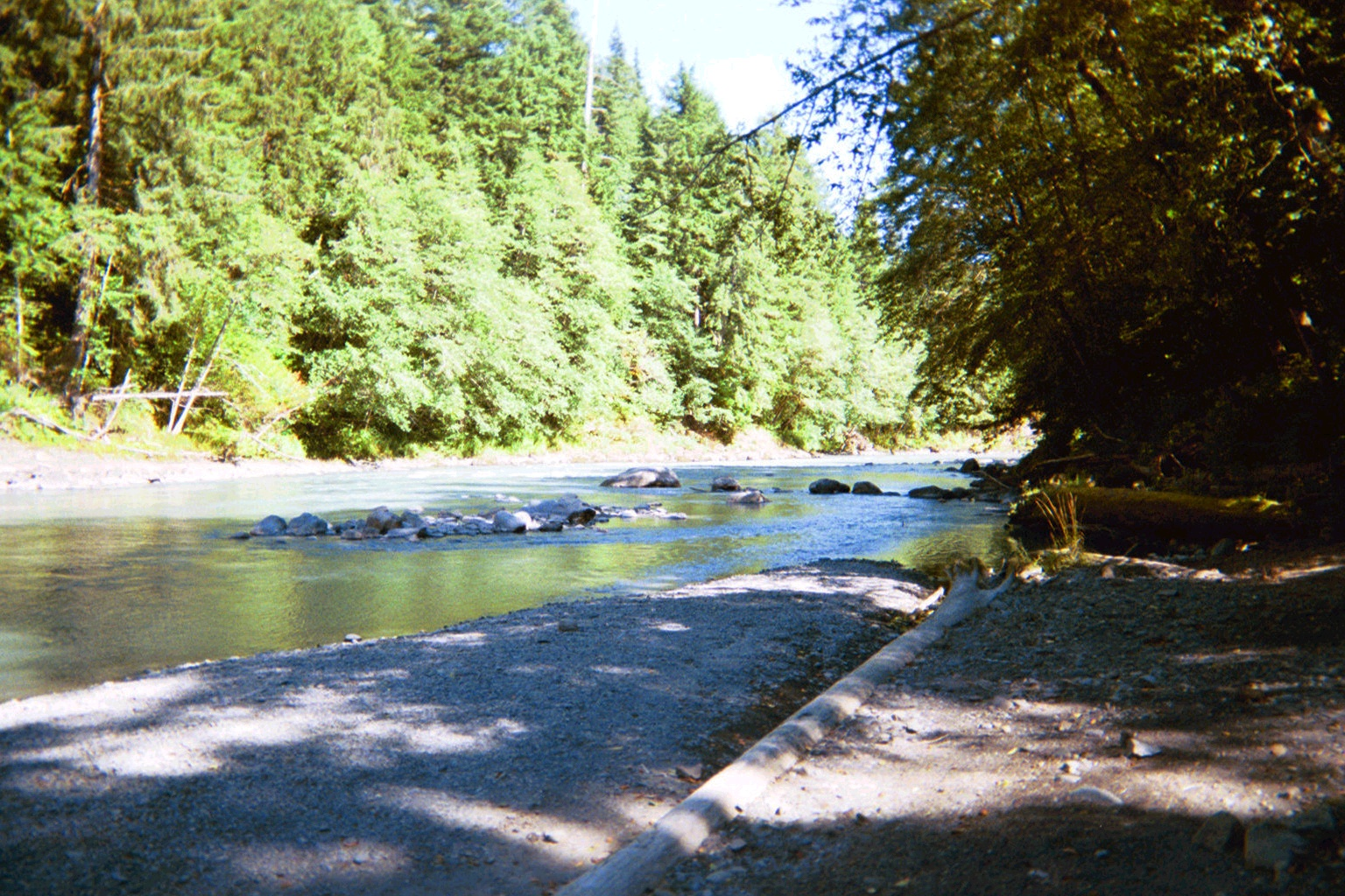 Hoh river parcel 9 for Hoh river fishing